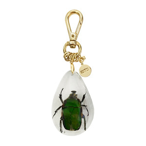 RUTELIDAE KEY RING